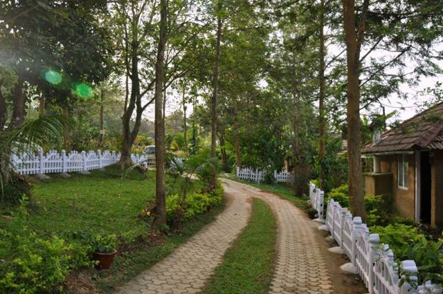 Silver Oaks Homestay In Coorg Silver Oaks Homestay Silver Oaks Homestay In Kodagu